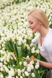 Schöner weiblicher Florist vereinbart Frühlingsblumen Lizenzfreies Stockbild