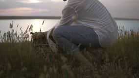 Schöner weiblicher Kunstkünstler, der ihre Sketchbooks und Gestell zur Arbeit vorbereitet Blauer Himmel des Sees und des freien R stock video