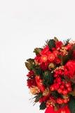 Schöner Weihnachtsbaum auf weißem Hintergrund Lizenzfreie Stockbilder