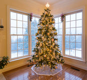 Schöner Weihnachtsbaum mit Schnee draußen Lizenzfreies Stockbild