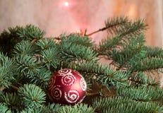 Schöner Weihnachtshintergrund mit Tannenzweigen und roter Ball, Platz für Ihren Text Stockfotografie