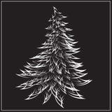 Schöner Weihnachtstannenbaum stockfotografie