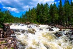 Schöner wilder Fluss im arktischen Wald der schnelle Fluss trägt sein Wasser lizenzfreie stockfotos
