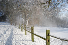 Schöner Winter stockfotografie