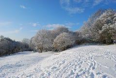 Schöner Winter stockbilder