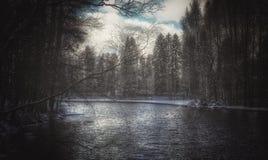 Schöner Winter der Flussbaum-Natur draußen schneien stockbild