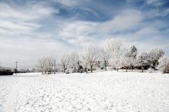 Schöner Winter in der Stadt Lizenzfreie Stockfotografie