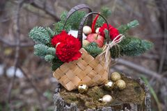 Schöner Winterblumenstrauß der Fichte, der Äpfel, der Gartennelken und der Baumwolle stockfotos