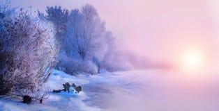 Schöner Winterlandschaftsszenenhintergrund mit Schnee bedeckte Bäume und gefror Fluss stockfotografie