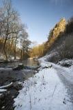Schöner Winterschnee umfasste Landschaftslandschaft von Fluss flo Stockbilder