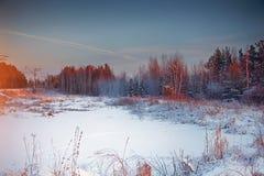 Schöner Wintersonnenuntergang Stockfotos