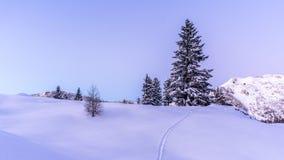 Schöner Wintersonnenuntergang in den Bergen stockbild
