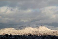 Schöner Wintertag mit Schnee bedeckte Santa Catalina Pusch Ridge-Berge in Tucson, Arizona stockfotografie