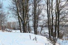 Schöner Wintertag Schnee auf der Bank des Flusses Lizenzfreies Stockfoto