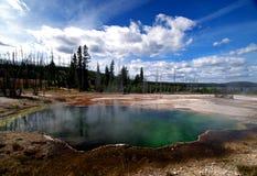 Schöner Yellowstone, der heiße Frühlinge dämpft Stockbilder