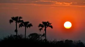 Schöner Zeitspannesonnenuntergang in der Landschaft stock video