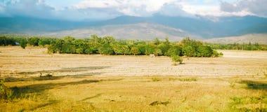 Schönes Ackerland, Felder in Asien Stockfotos