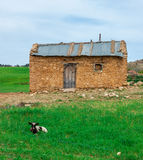 Schönes altes Haus von Berbers lizenzfreies stockfoto