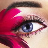 Schönes Auge Stockfoto