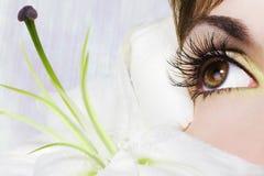 Schönes Auge stockfotografie