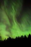 Schönes aurora borealis in Estland Lizenzfreies Stockfoto