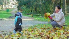 Schönes Baby spielt im Herbstpark mit ihrer Mutter über gefallene Blätter Das Kind wird warm in einer Klage gekleidet und stock footage