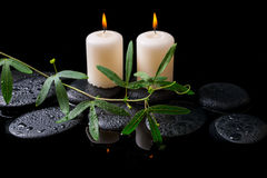 Schönes Badekurortkonzept der grünen Rankenpassionsblume, Kerzen Stockfoto