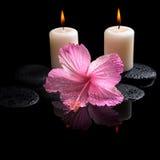 Schönes Badekurortkonzept des empfindlichen rosa Hibiscus, Kerzen Stockbild
