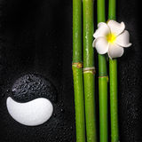 Schönes Badekurortstillleben des Symbols Yin Yang, Frangipaniblume a Stockbild