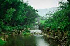 Schönes Bambusmeer Lizenzfreie Stockbilder