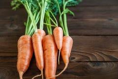 Schönes Bild des Essens des Salats Karotten mit den Zweigen auf einem dunklen hölzernen Hintergrund Natürliche Beschaffenheit von lizenzfreie stockbilder