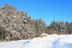 Schönes Bild des Winters landscape Stockfotos