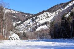 Schönes Bild des Winters landscape Berge und Birken sibirien Khakassia Stockfotos