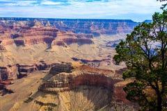 Schönes Bild von Grand Canyon Stockfotografie
