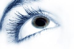 Schönes blaues Auge stockfotos
