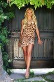 Schönes blondes Baumuster draußen Stockfotos