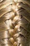 Schönes blondes glänzendes Haar war umsponnen Stockfotografie