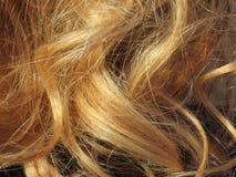 Schönes blondes Haar einer intensiven Farbe und sehr gut gepflegt lizenzfreies stockfoto