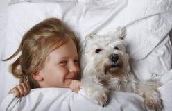 Schönes blondes kleines Mädchen, das mit weißem Schnauzerhündchen auf weißem Bett lacht und liegt Portrait von zwei nassen Pelika Lizenzfreies Stockbild