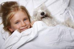 Schönes blondes kleines Mädchen, das mit weißem Schnauzerhündchen auf weißem Bett lacht und liegt Portrait von zwei nassen Pelika Stockfotos
