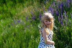 Schönes blondes Mädchen in der Wiese Lizenzfreie Stockfotos