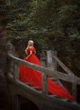 Schönes blondes Mädchen in einem luxuriösen roten Kleid Stockfotografie