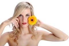 Schönes blondes Mädchen mit gerber Gänseblümchenblume auf einem Weiß Lizenzfreie Stockfotografie
