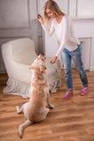 Schönes blondes Mädchen mit Labrador retriever Lizenzfreie Stockfotos