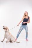 Schönes blondes Mädchen mit Labrador retriever Stockfotos