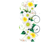Schönes Blumenfeld Stockbild