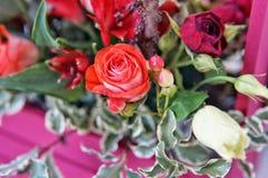 Schönes Blumengesteck von Roten, Rosa- und Burgunder-Blumen in einer rosa Holzkiste lizenzfreies stockbild