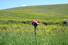 Schönes Blumenkreuz durch Wildflowers Lizenzfreie Stockbilder