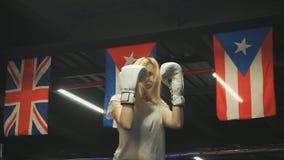 Schönes Boxermädchen in den Handschuhen bildet ein Bündel Durchschläge aus stock video