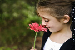 Schönes Brunette-Mädchen Lizenzfreies Stockbild